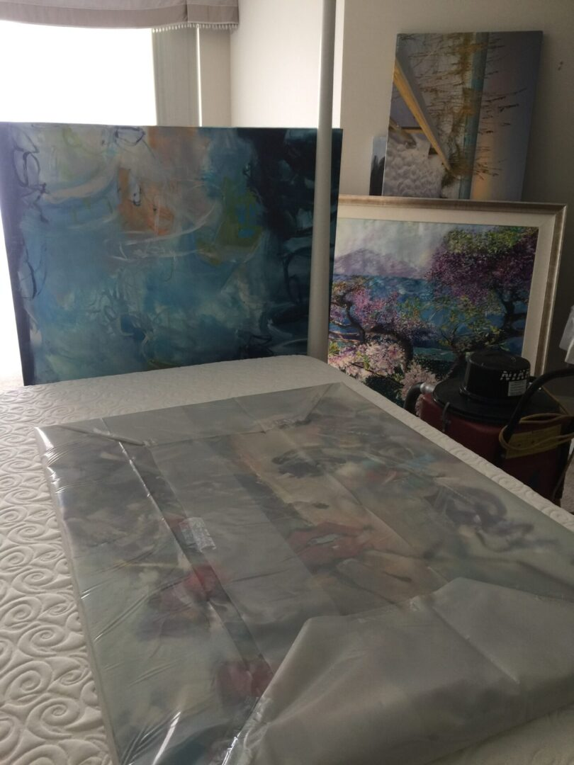 Mold Remediation Art Packup
